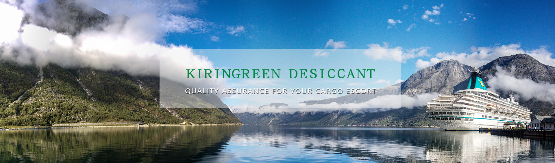 Container desiccant supplier